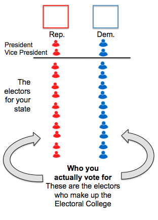 understanding the electoral college Take a peek into the electoral process- from party primaries to the general election students will learn the distinctions between the popular vote and the electoral college, and exercise their critical reasoning skills to analyze the differences between the presidential and congressional elections.